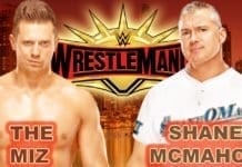 Shane McMahon vs the Miz WrestleMania 35, The Miz vs Shane McMahon