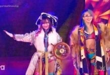Asuka Kairi Sane Tag Team, Paige New Tag Team