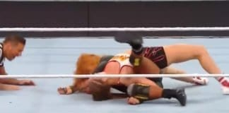 WrestleMania 35 Main Event Botched Finish