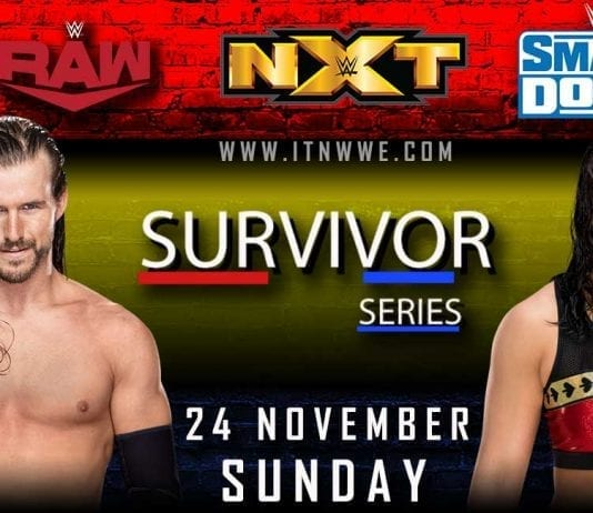Survivor Series 2019 main Poster