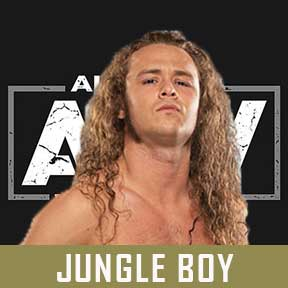 JUNGLE BOY AEW