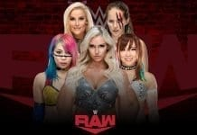 RAW Women Survivor Series 2019